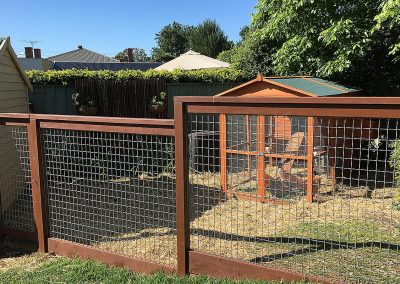 Chicken house yard